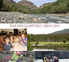 TCG Newsletter Summer 2015