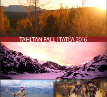 TCG Fall Newsletter 2016