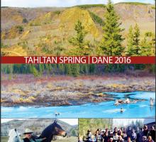 TCG Spring Newsletter 2016